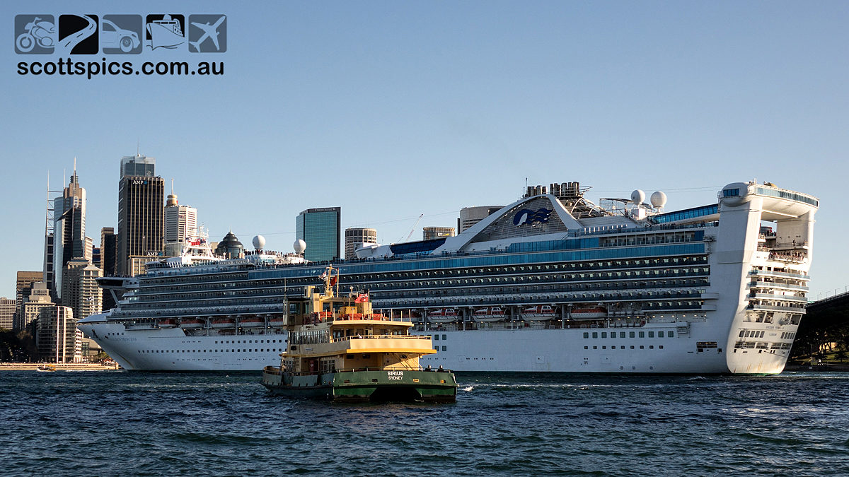 Golden Princess Back In Sydney Scotts Photography - Ship relocation cruises